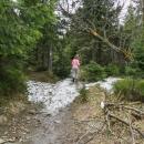 Cca 1300 m n. m. - objevují se první zbytky sněhu!