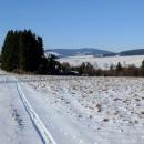 A pak se vyjde z lesa a cesta klesá k vísce Lesica
