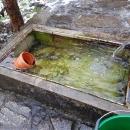 Rybky si u nás uskladnil kamarád Ludvík a ta voda má asi 7°C