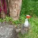 Covid opatření před vstupem do lesa :-)