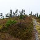 Skalnatý vrcholek Brousku. Na běžkách se v zimě jezdí vlevo.