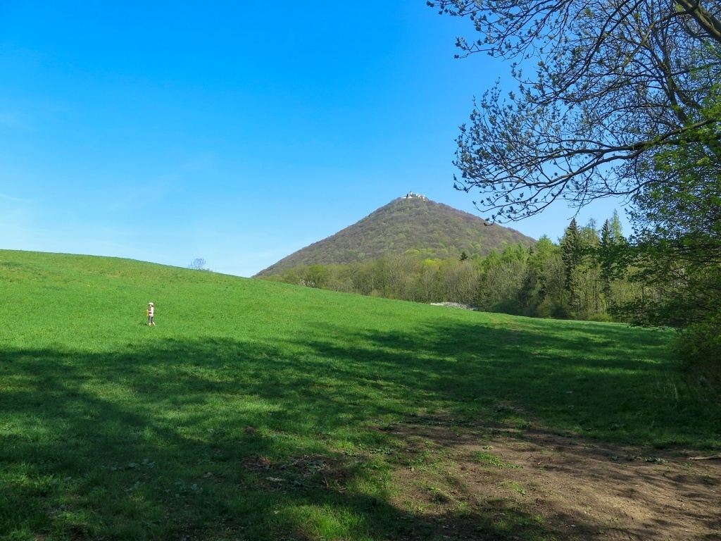 Nejvyšší Milešovka (837 m n.m.) byla na programu hned jako první. To jsme ještě byli svěží! Šárka odbíhá pro pampelišky.
