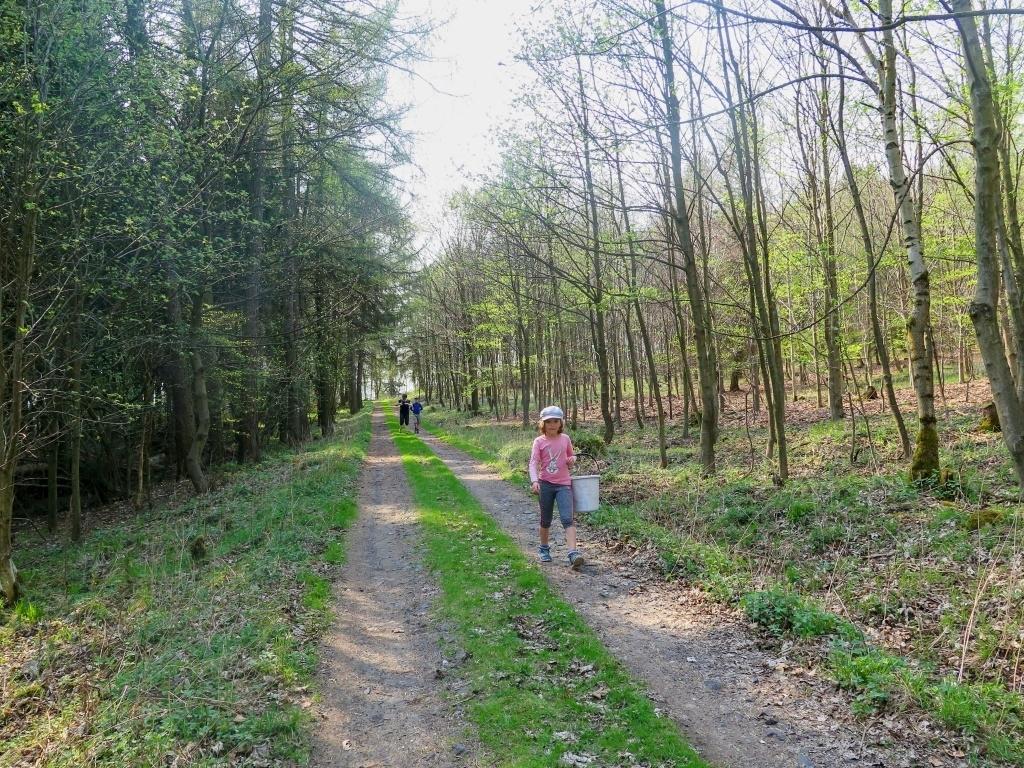 A pokračujeme lesem dále, držíme se naučné stezky...