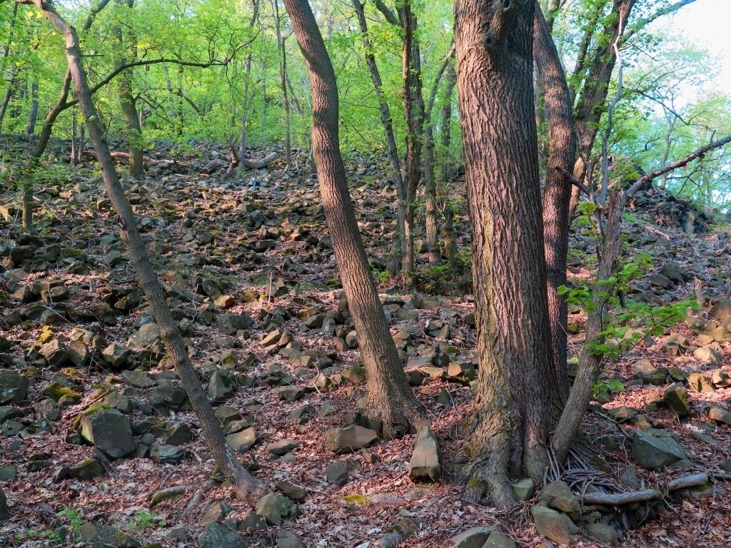Suťová pole všude kolem dávají tušit něco o původu celého pohoří