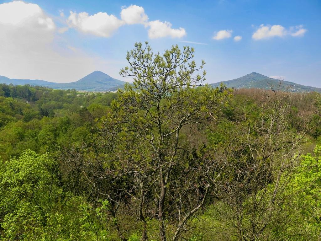 Vyhlídka z hradu Opárno na Milešovku a Kletečnou