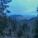 Trasu na Návrší jsme zvolili po cyklotrase a občas rozhlednu na Štvanici zahlédli skrz stromy.
