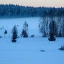 Naštěstí šlo na těch 3,5 km nasadit lyže a cestou domů jsme měli takovéto výhledy.