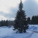 Alpská vyhlídka se dneska nekoná, je pod mrakem