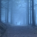 Stoupání v mlze, fajn den pro návštěvu rozhledny :-)