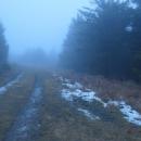 200 metrů před vrcholem míjíme běžeckou trasu od Šerlichu, zbytky sněhu jsou z listopadového sněžení. Kdy konečně přijde ta pravá zima?