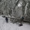 Sjezd na sedlo Příschlop - cestu nám zkomplikovalo několik spadlých stromů. Lyže dolů a kus musíme pěšky. Boříme se po kolena...