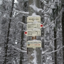 Trasa je to pro běžky ideální, hřebínek se mírně vlní. Ovšem do okamžiku, než nás protijedoucí lyžaři začali varovat před padajícími stromy.