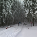 Konečně se z lesa vynořili i Luděk s Šárkou a další běžkaři.