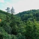 Ale kromě vyhlídky do údolí potoka Špraněk, který to má celé tady na svědomí, tu nic moc není.