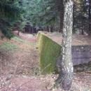 Betonová protitanková stěna v lese :-) Proč se směju? Nevím, v lese mají růst stromy, houby, borůvky, maliny... apod.