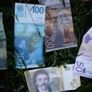 Srbské peníze