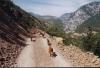 Dopravní zácpa na albánské silnici :-)