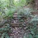 Nalézáme zbytky lesní železnice. Dodnes tu jsou k nalezení pražce.