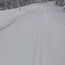 Po pár kilometrech narazil Luděk na rolbu a tak měl stopu čerstvě projetou! Já se tou dobou pokoušela někde za Starými Hamry nasadit sněhové řetězy :-)