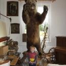 Náš první a jediný beskydský medvěd