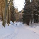 2 km na Lesní bar jdeme pěšky