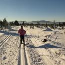 Uháníme směr Králický Sněžník
