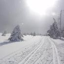 Na hřebeni Rychlebek, směrem k chatě Paprsek. Foceno proti sluníčku, ale fakt to tak bylo - svítilo a sněžilo
