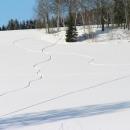 Snowboardistické malby na sněhu