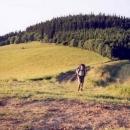 Pastviny v sedle pod Malým Lopeníkem (POZOR: na fotce je Luděk, ne dobytek!)