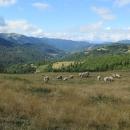 Bjelasica je pastevecké pohoří