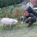 Černá Hora, to je ráj! Tomu říkám úrodná země!