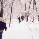 Stoupáme na Boreč. Sněhu je kolem požehnaně.