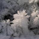 Všude kolem vládne drsná zima