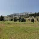 Cikánské Polje - planina s několika salašemi.