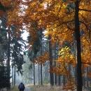 Podzimní cykloturistika