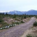 Ještě jeden pohled na Sněžku a Obří důl