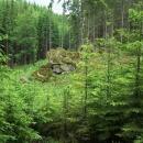 Skála v lese cestou na Vysoký kámen - už si nepamatuji jméno