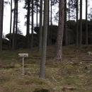 V hlubokých lesích projíždíme kolem Elfích skal