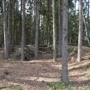 Malé zbytky Vítkova Hrádku u Blažejova