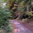 Listí je ještě dost na stromech, ale už i na zemi