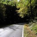 Podzimní zážitek - jízda v padajícím listí