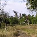 Rozhledna na vrcholu Děčínského Sněžníku připomíná šachovou věž.