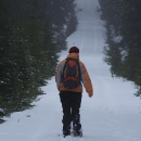 Na sněžnicích pokračujeme po osamocených cestách, pozornému oku neunikne v dáli zvěř