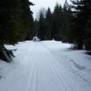 Běžkařská magistrála v Českém lese - asi 6 km vyjetých stop (jediné, na které jsme narazili)