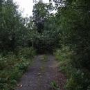 Do cesty se nám postavila příroda