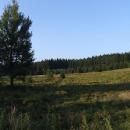 Večerní krajina Českého lesa - tady také stála ves (býv. Stoupa)