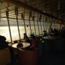 Sedíme si na horní palubě v Panorama baru a popíjíme pivko.