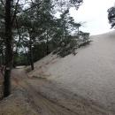 První kilometry vedou sice lesem, kde mezi stromy prosvítají první písečné duny, ale cesta je zatím pevná, nikterak se neboří.