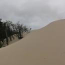 Na krajích je krásně vidět, jak se příroda snaží s pískem bojovat.