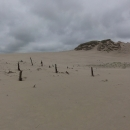 Po turistické stezce je možné pěšky dojít až do vesnice Rowy, kde se nacházejí další duny, ale nám to jako ukázka docela stačí.